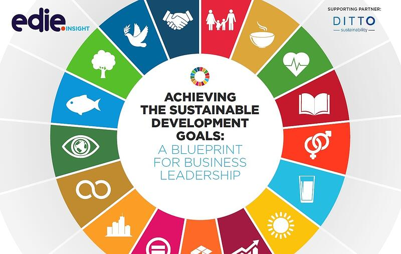 Achieving the Sustainable Development Goals: A Blueprint for Business Leadership